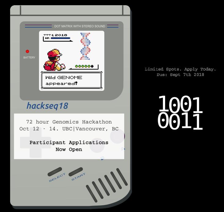 Gameboy Flyer